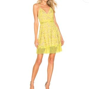 Lovers and Friends Bellini Dress